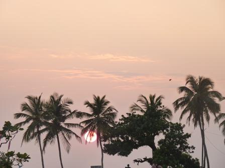 Индия . Фото №3